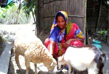 Jobeda Khatun: Rising Against All Odds