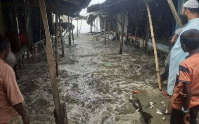 Une catastrophe silencieuse aux effets durables – A silent disaster with lasting effects