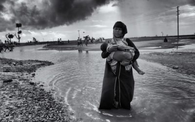 The Rohingyas must not become a forgotten crisis